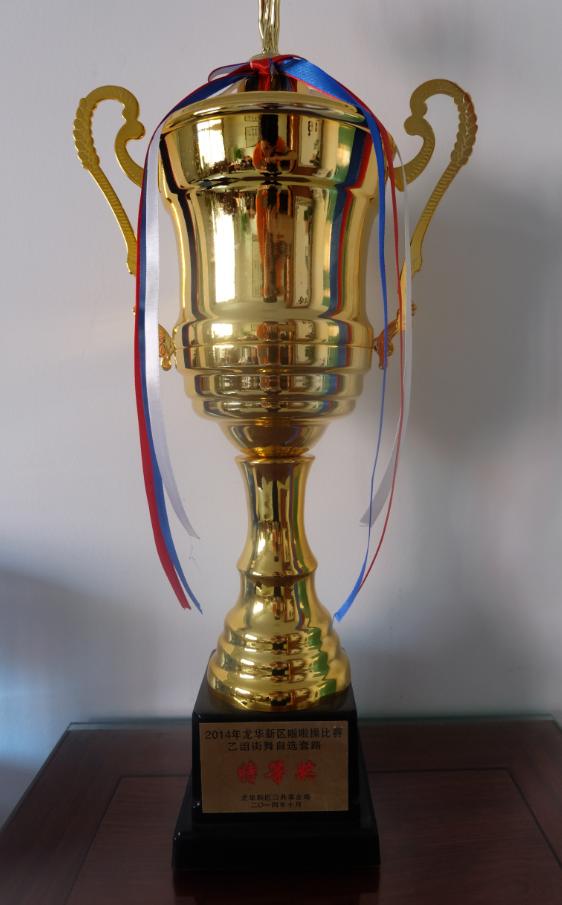 2014年龙华新区啦啦操比赛特等奖